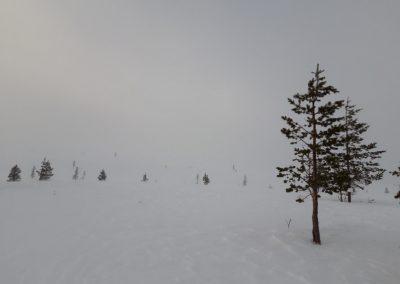 tunturi a ködben